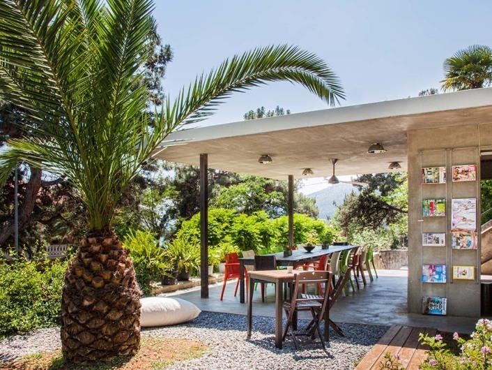 Bahçede Sinek Kafe