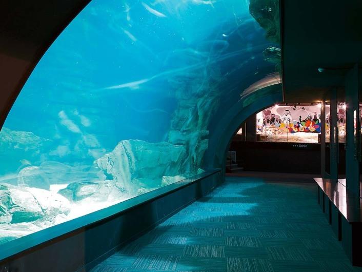 aquarium de cin 233 aqua