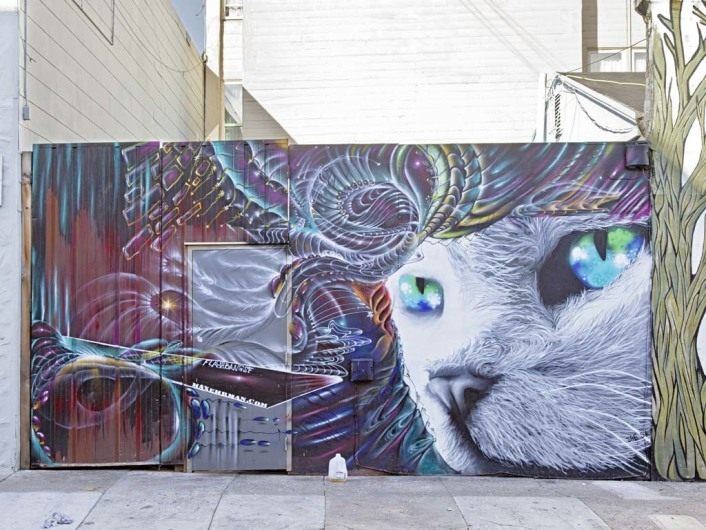 Street art at Clarion Street, Mission, San Francisco, California, USA