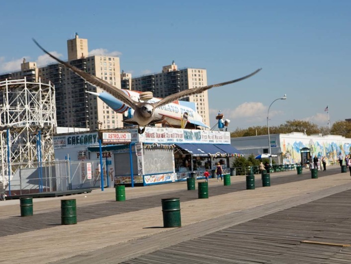 Coney Island  Ef Bf Bdffnungszeiten