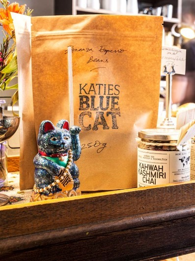 Katie's Blue Cat