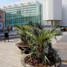 Museu del Art Contemporani de Barcelona (MACBA)