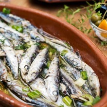 Ribatejo