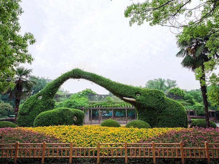 Shanghai Zoo 上海动物园